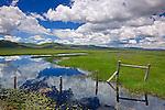 Camas County, Idaho<br /> Centenial Marsh Camas Prairie with fence and cloud reflections at the marsh edge