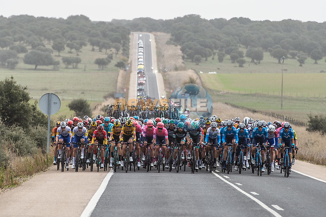 The peloton across the road during Stage 16 of the Vuelta Espana 2020, running 160km from Salamanca to Ciudad Rodrigo, Spain. 6th November 2020. <br /> Picture: Unipublic/Charly Lopez | Cyclefile<br /> <br /> All photos usage must carry mandatory copyright credit (© Cyclefile | Unipublic/Charly Lopez)