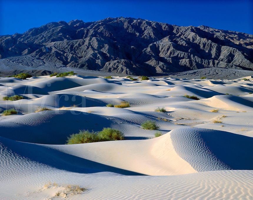 © David Paterson.Sand dunes and Panamint Mountains, Death Valley, California, USA.