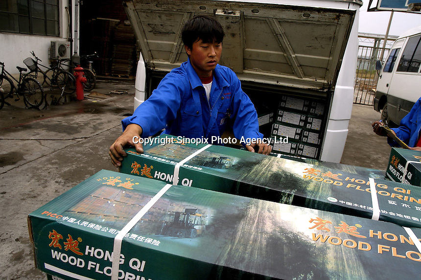 Worker in Hong Qi wood floor factory, a private firm which produces floor boards for the booming domestic market and for export to Europe (including UK) and the United States, using wood imported from Asia and South America.
