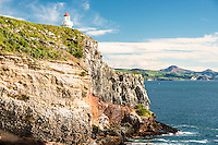 Taiaroa Head Lighthouse on Otago Peninsula, Coastal Otago, East Coast, New Zealand