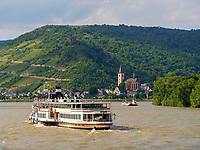 Daddampfer Goetrhe auf dem Rhein bei Lorch, Hessen, Deutschland, Europa<br /> paddle-steamer Goethe Rhine near Lorch, Hesse, Germany, Europeon