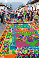 Antigua, Guatemala.  Semana Santa, Holy Week.   Spectators watch as artists put  final touches on an alfombra (carpet) of colored sawdust to decorate the street in advance of the passage of a procession during Holy Week.  The alfombra will be finished only a couple of hours before the passage of the procession, after which the remains will be quickly swept away by municipal street sweepers.