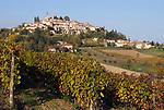 Italien, Piemont, Region Monferrato, Weinberge und Weinort Rosignano Monferrato   Italy, Piedmont, Rosignano Monferrato: vineyards