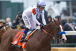 LOUISVILLE, KY - MAY 5:  Justify, trained by Bob Baffert, ridden by Mike Smith at Churchill Downs on May 5, 2018 in Louisville, Kentucky. (Photo by Eric Patterson/Eclipse Sportswire/Getty Images)