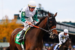 31 October 2009: Larry Sterling Jr. tries desperately to pull Oconee up after finishing midfield in the 4th race at Keeneland.