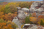 """Shawnee National Forest, IL<br /> """"Camel Rock"""" a sandstone formation above the autumn forest canopy- Observation Trail, Garden of the Gods Recreation Area"""