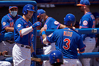 New York Mets Tomás Nido (3) fist bumps Brandon Nimmo  (9) after hitting a home run during a Major League Spring Training game against the St. Louis Cardinals on March 19, 2021 at Clover Park in St. Lucie, Florida.  (Mike Janes/Four Seam Images)
