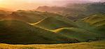 Farmland in the Manawatu Region of New Zealand.
