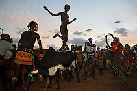 "Bene tribe Bull Jumping Ceremony.  The kid doing the bull jumping is Gaito Loka and it is a coming of age ceremony for the Hamar and Bene tribes.  Woman that are related to the boy get whipped in support of him.  The idea is that at some point if they need help they can go to him and say ""look... I was there to support you at your bull jumping, SEE THE SCARS... now I need your help.""..Bull jumpings also have a lot of dancing and activity so they have become local tourist attractions... even this one that is so remote.  The CAMERA CLUB group with tripods is all a separate trip put on by Steve Turner...Contacts:.Steve Turner... steveturner@originsafari.info.+ 254 722 707521..Robel Pedros Local guide for Surma.+ 251 911 423112.Daniel Tesfaye  +251 912 029726"