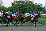 NEW ORLEANS, LA - FEBRUARY 20:<br /> Candy My Boy #13, ridden by Shaun Bridgmohan takes the early lead in the Risen Star Stakes on Louisiana Derby Preview Race Day at Fairgrounds Race Course on February 20,2016 in New Orleans, Louisiana. (Photo by Steve Dalmado/Eclipse Sportswire/Getty Images)