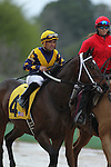 HOT SPRINGS, AR - MARCH 12: Jockey Corey Nakatani aboard Nickname (4) during post parade of the Honeybee Stakes at Oaklawn Park on March 12, 2016 in Hot Springs, Arkansas. (Photo by Justin Manning)