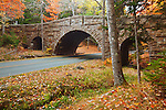 Stanley Brook Bridge surrounded by fall colors on the Park Loop Road in Acadia National Park, Maine, USA