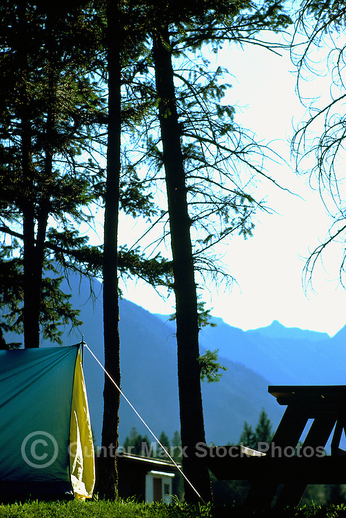 Tent Camping in Solitude in West Coast Forest, BC, British Columbia, Canada