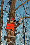 Wisconsin hunter taking aim with his AR-15