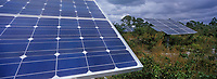 Les Bahamas /Ile d'Andros/South Andros : le Eco-Lodge-Tiamo Resort - les capteurs solaires qui produisent l'électricité de l'Hotel // Bahamas / Andros Island / South Andros: Eco-Lodge-Tiamo Resort - solar panels that produce electricity from the Hotel