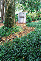 Periwinkle with garden path and gate #5687. Virginia.