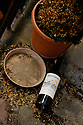 "Paris, France. 09.05.2015. An abandoned, empty, bottle of ""Bastardy"" wine from the Corbieres region, Place du Tertre, Montmartre, Paris, France. Photograph © Jane Hobson."