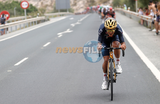 Olympic Champion Richard Carapaz (ECU) Ineos Grenadiers during Stage 10 of La Vuelta d'Espana 2021, running 189km from Roquetas de Mar to Rincón de la Victoria, Spain. 24th August 2021.     <br /> Picture: Luis Angel Gomez/Photogomezsport | Cyclefile<br /> <br /> All photos usage must carry mandatory copyright credit (© Cyclefile | Luis Angel Gomez/Photogomezsport)