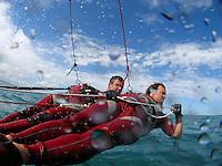 Sport Catamaran