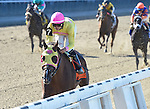 Belle Gallantey (no. 7), ridden by Jose Ortiz and trained by Rudy Rodriguez, wins the 76th running of the grade 1 Beldame Invitational Stakes for fillies and mares three years old and upward on September 27, 2014 at Belmont Park in Elmont, New York.  (Bob Mayberger/Eclipse Sportswire)