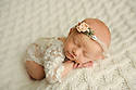 Avery F Newborn Session
