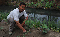 "Liu  Qing yun, 66, grows cotton next to a chemical factory that makes preservitives near Xiditou. Xiditou is known as one of China's worse ""cancer villages"" where a reported ten percent have died from cancer."