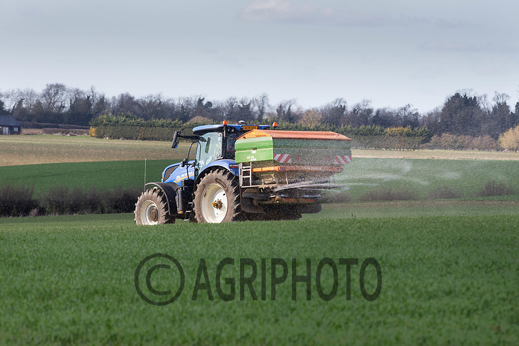 25-3-2021 Applying Nitrogen to Winter wheat<br /> ©Tim Scrivener Photographer 07850 303986<br />      ....Covering Agriculture In The UK....