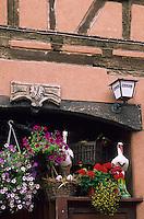 "Europe/France/Alsace/67/Bas-Rhin/Ingwiller : Façade du restaurant ""Les Cigognes"""