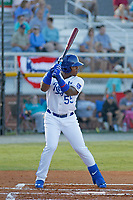 Burlington Royals outfielder Juan Carlos Negret (55) at bat during a game against the Greeneville Reds at the Burlington Athletic Complex on July 7, 2018 in Burlington, North Carolina. Burlington defeated Greeneville 2-1. (Robert Gurganus/Four Seam Images)