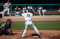 Michael Berglund (15) of the Charleston RiverDogs at bat against the Augusta GreenJackets at Joseph P. Riley, Jr. Park on June 27, 2021 in Charleston, South Carolina. (Brian Westerholt/Four Seam Images)