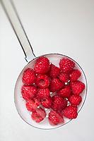Gastronomie Générale /  Diététique / Framboise Bio // General Gastronomy / Diet / Organic Raspberry