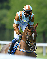 Caspian Prince ridden by Alistair Rawlinson goes down to the start of The AJN Steelstock / Pam Bruford Memorial Handicap during Horse Racing at Salisbury Racecourse on 9th August 2020