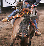 CHAD PILSTER •Hays Daily News<br /> <br /> Casey McGooden rides a bronc on Monday, July 29, 2013, during the Graham County fair and Jayhawker Roundup Rodeo in Hill City, Kansas. McGooden scored a 74.