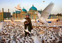 Man with Birds in Mazar-e Sharif, Afghanistan 2007