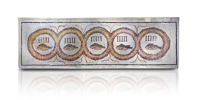 Pictures of a geometric Roman doorstep mosaics depicting five fishes surrounded by bars and a medallion, from the ancient Roman city of Thysdrus. 3rd century AD The Small Baths in the M'barek Rhaiem area. El Djem Archaeological Museum, El Djem, Tunisia. Against a white background<br /> <br /> The mosaic depicts the emblem of the Pentasii, a powerful Nortyh African Roman association that organised and  maintained the wild animals and hired animal killers to carry on the games in ampitheatres.