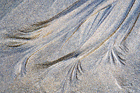 Abtract sand carved out by stream on Oregon coast.