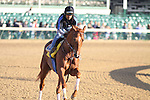 Line of David works at Churchill Downs in preparation for The Kentucky Derby. 04.29.2010
