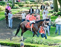 Malibu Glow before The Joe French Memorial Stakes at Delaware Park on 6/1/13