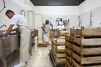 The warehouse is being prepared for the production of mullet roe - Cabras, Sardinia.