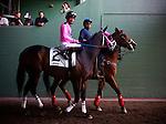 Arcadia CA- April 06:  Comma to the Top with Edwin Maldenado aboard heads to the track for the Potrero Grande Stakes at Santa Anita Park in Arcadia, CA on April 6, 2013. (Alex Evers/ Eclipse Sportswire)