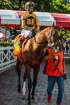 SEPT 06, 2021: HEADLINNE REPORT in the Gr.1 Hopeful  Stakes, for 2-year olds, going 7 furlongs, at Saratoga Racecourse, Saratoga Springs, New York. Sue Kawczynski/Eclipse Sportswire/CSM