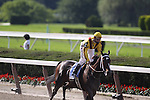 Rachel Alexandra with Calvin Borel up wins the Mother Goose Stakes at Belmont Park, Elmont, NY 06.27.2009