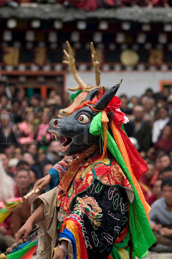 Yak dancer represents the animal world at the Monlam Chenpo, Katok Dorjeden Monastery - Kham, (Tibet), Sichuan, China