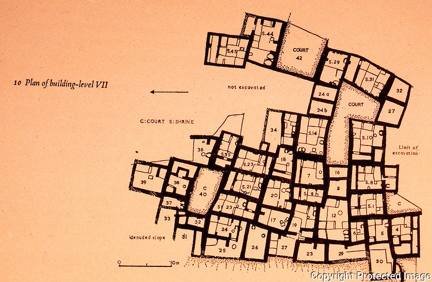 World Civilization:  Catal Huyuk--Plan of  Level VII.  Grid: 10 meters.  C. 6200-6050/6070 B.C.