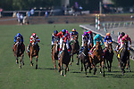 ARCADIA, CA - NOVEMBER 05: Queen's Trust #11 (blue cap), ridden by Lanfranco Dettori wins the Breeders' Cup Filly & Mare Turf during day two of the 2016 Breeders' Cup World Championships at Santa Anita Park on November 5, 2016 in Arcadia, California. (Photo by Jesse Caris/Eclipse Sportswire/Breeders Cup)