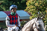 July 25, 2020: Volatile ridden by Ricardo Santana, Jr. enters the track before the start of the Alfred G Vanderbilt grade 1  on Alfred G Vanderbilt  Day at Saratoga Race Course in Saratoga Springs, New York. Rob Simmons/Eclipse Sportswire/CSM