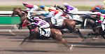 Horse Five Stars Agent #9 ridden by Jack Wong Ho-nam competes during the race 5 of HKJC Horse Racing 2017-18 at the Sha Tin Racecourse on 16 September 2017 in Hong Kong, China. Photo by Victor Fraile / Power Sport Images