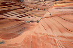 Layers of rock formed in waves in the South Coyote Buttes area in Arizona