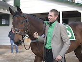 5th Filly/Mare Maiden Hurdle - Stalled